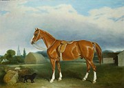 Spaniel Paintings - A Chestnut Hunter and a Spaniel by Farm Buildings  by John E Ferneley