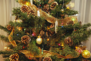 Religious Celebrations Prints - A Close View Of A Decorated Christmas Print by Joel Sartore