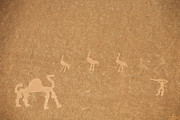 Ostrich Photos - A Close View Of Ancient Petroglyphs by Taylor S. Kennedy