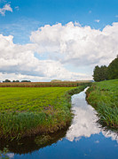 Natuur Photos - A cloudy ditch by Ruud Morijn