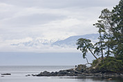 Sooke Prints - A Cloudy Spring Day On Vancouver Island Print by Taylor S. Kennedy