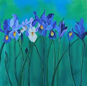 Print Of Irises Framed Prints - A Clutch of Irises Framed Print by Almeta LENNON