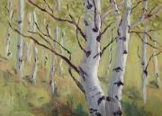 Artist Canvas Painting Originals - A Couple of Aspen by Zanobia Shalks