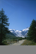 Dirt Roads Photo Prints - A Couple Walks Toward The Morteratsch Print by Taylor S. Kennedy