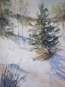 Snow Drifts Painting Posters - A Crooked Pine Poster by Sandra Strohschein