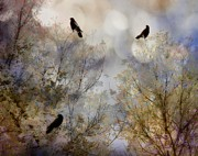 Avian Art Metal Prints - A Crows Tale Metal Print by Gothicolors And Crows