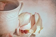 Sophie Vigneault. Framed Prints - A Cup of Tea and a Rose Framed Print by Sophie Vigneault