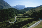Saint Moritz Prints - A Curving Mountain Road Outside St Print by Taylor S. Kennedy