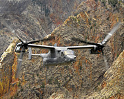 Osprey Tapestries Textiles - A Cv-22 Osprey Flies Over The Canyons by Stocktrek Images