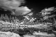 Infrared Originals - A Dark Lake by Julius Reque