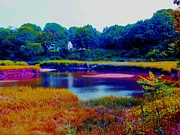 A Day At The Marsh In Cape Cod Print by Annie Zeno