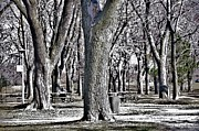 Urban Scenes Originals - A Day in the Park by Reb Frost
