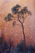 Monolith Posters - A Desert Bloodwood Tree Against The Red Poster by Jason Edwards