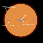 Large Scale Digital Art Prints - A Diagram Comparing The Sun To Vy Canis Print by Ron Miller