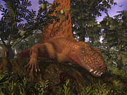 Large Scale Posters - A Dimetrodon Amongst Alethopteris Ferns Poster by Walter Myers