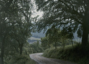 Dirt Roads Photos - A Dirt Road Winds Past Trees by Maynard Owen Williams