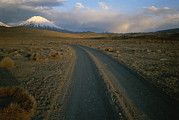 Dirt Roads Photos - A Dirt Road Winds Towards Sajama by Joel Sartore