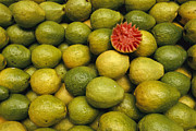Food Vendors Prints - A Display Of Guavas In An Open Air Print by Richard Nowitz