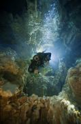 Bahama Islands Prints - A Diver Ascends A Deep Shaft In Dans Print by Wes C. Skiles