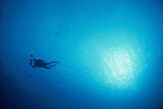 Turks And Caicos Islands Photos - A Diver Carrying Lights Swims by Heather Perry