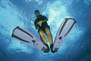 British Portraits Photo Posters - A Diver Descends Into The Caribbean Sea Poster by Heather Perry