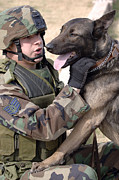 Bonding Art - A Dog Handler And His Military Working by Stocktrek Images