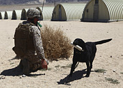 Bonding Art - A Dog Handler Calls Over A Black by Stocktrek Images