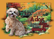 Shih Tzu-poodle Prints - A Dog Loves You More - ShihPoo Print by Renae Frankz