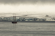 Sailboat Ocean Photos - A Double-masted Sailboat Floats Near An by Norbert Rosing