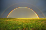 Prairie Photography Posters - A Double Rainbow In A Meadow Poster by Robbie George