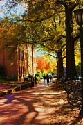 Campus Life Prints - A Fall Day On Campus Print by Bob Whitt