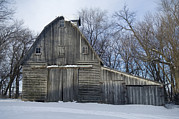 Winter Storm Art - A Family Farm Near Cortland, Ne by Joel Sartore
