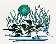 Loon Painting Framed Prints - A Family of Loons Framed Print by Arnold Isbister