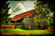 Shed Digital Art Posters - A Farm-Picture Poster by Lois Bryan