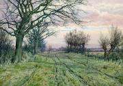 Watercolor On Paper Framed Prints - A Fenland Lane with Pollarded Willows Framed Print by William Fraser Garden