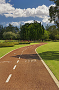Man Made Space Prints - A Fitness Trail In Burswood Park. A Print by Tatiana Boyle
