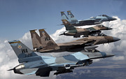 F-16 Aggressor Prints - A Flight Of Aggressor F-15 And F-16 Print by Stocktrek Images
