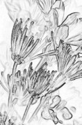 Pen And Ink Drawing Prints - A Flower Sketch Print by Julie Lueders