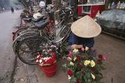 Cycling Framed Prints - A Flower Vendor Sitting On A Sidewalk Framed Print by Steve Raymer