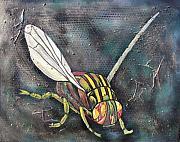 Sarah Crumpler - A Fly