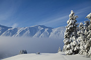 Kenai Peninsula Prints - A Fog Bank in the Mountains Print by Tim Grams