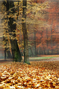 A Foggy Autumn Day Print by Hannes Cmarits
