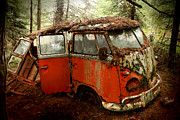Forrest  Acrylic Prints - A Forgotten 23 Window VW Bus  Acrylic Print by Michael David Sorensen