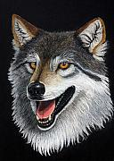 Canine Mixed Media Prints - A Friendly Wolf Print by Lorraine Foster
