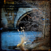 Chris Lord Metal Prints - A Frozen Corner in Central Park Metal Print by Chris Lord