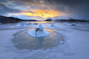 Sunset In Norway Photo Prints - A Frozen Fjord That Is Part Print by Arild Heitmann