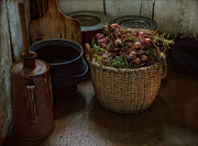 Basket Photos - A Full Basket by Robin-lee Vieira