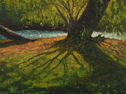 Terry Perham Prints - A gainst The Light. Willow Print by Terry Perham