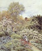 A Garden In Spring Print by Helen Allingham