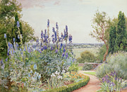 Delphinium Framed Prints - A Garden Near the Thames Framed Print by Alfred Parsons